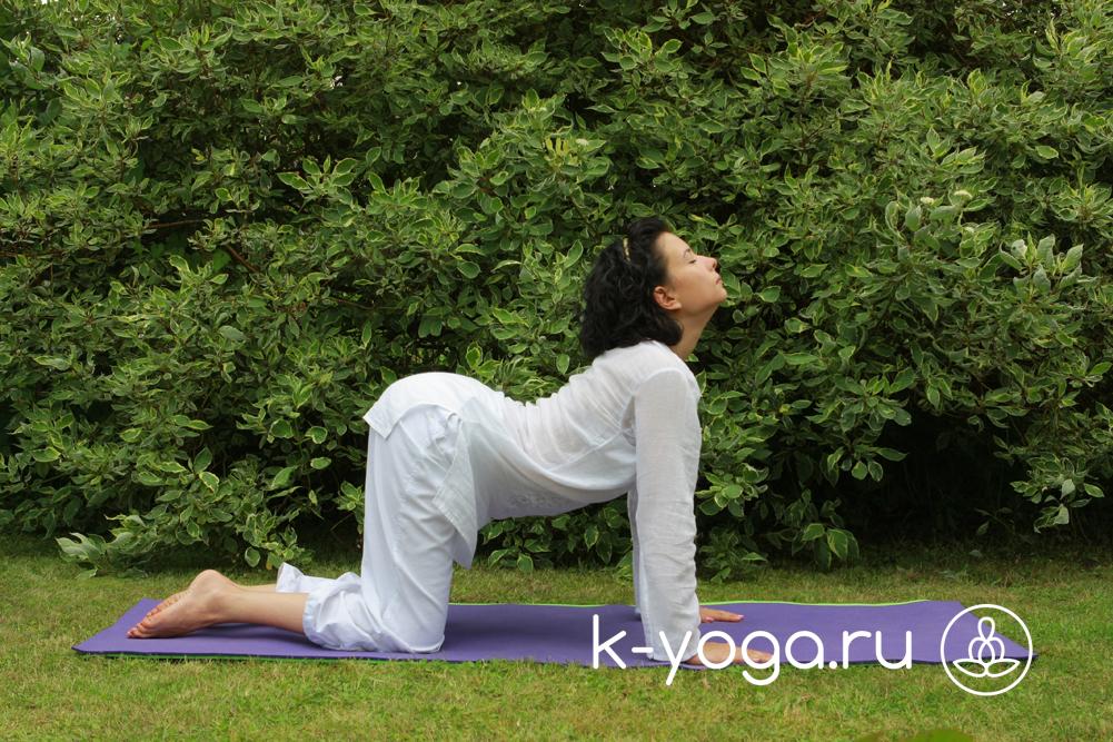 Кундалини йога трансформация сексуальной энергии