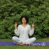 Медитация для увеличения интеллекта