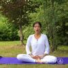 Медитация от безумия